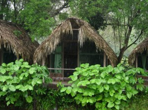 Palenque Cabana